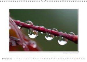 Gerlach, I: Emotional Moments: Raindrops. UK-Version