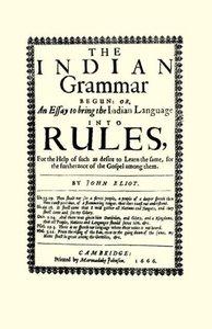 The Indian Grammar Begun