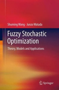 Fuzzy Stochastic Optimization