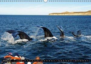 Motion Studies (Wall Calendar 2015 DIN A3 Landscape)