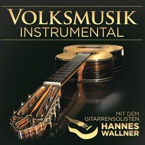 Volksmusik instrumental