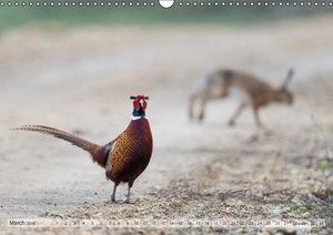 Emotional Moments: The pheasants. UK-Version (Wall Calendar 2016