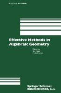 Effective Methods in Algebraic Geometry