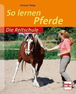 Die Reitschule: So lernen Pferde