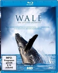 Wale-die letzten Giganten