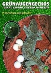 Grünaugengeckos