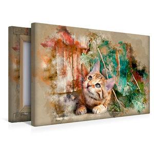 Premium Textil-Leinwand 45 cm x 30 cm quer Die junge Katze unter