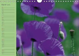 Poppies Dreams (Wall Calendar 2015 DIN A4 Landscape)