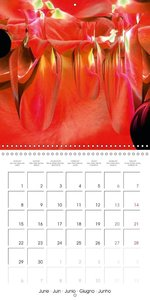 Fireworks In Red (Wall Calendar 2015 300 × 300 mm Square)