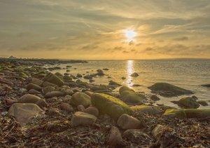 Pure Faszination - Schottlands Küsten (Tischaufsteller DIN A5 qu