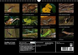Reptiles of Costa Rica / UK-version (Wall Calendar 2015 DIN A3 L