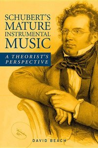 Schubert\'s Mature Instrumental Music