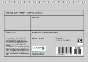 Kobolde auf 4 Pfoten - Bolonka Zwetna