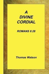 A Divine Cordial - Romans 8: 28