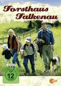 Forsthaus Falkenau St.11 (Amaray)