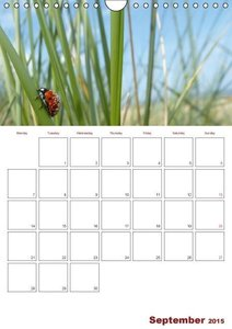 Moments of Happiness / UK-Version / Organizer (Wall Calendar 201