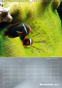 Colorful Reef Inhabitants (Wall Calendar 2015 DIN A3 Portrait)