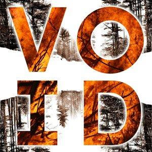 Void (Ltd.Vinyl)