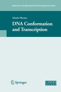 DNA Conformation and Transcription