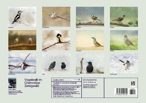 Vogelwelt im Chemnitzer Zeisigwald (Posterbuch DIN A3 quer)