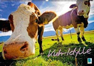 Kuh-Idylle (Wandkalender 2016 DIN A2 quer)
