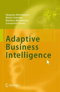 Adaptive Business Intelligence
