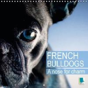 Calvendo: A Nose for Charm - French Bulldogs