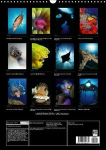 UNDERWATER / UK-Version (Wall Calendar 2015 DIN A3 Portrait)