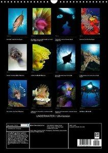 UNDERWATER / UK-Version (Wall Calendar 2015 DIN A3 Portrait)