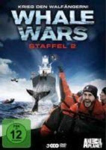 Whale Wars - Krieg den Walfängern! Staffel 2