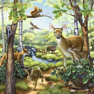 Wald-/Zoo-/Haustiere. Puzzle 3 X 49 Teile