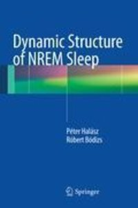 Dynamic Structure of NREM Sleep