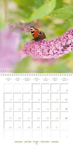 Dancing Flowers (Wall Calendar 2015 300 × 300 mm Square)