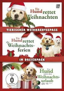 Tierischer Weihnachtsspaß