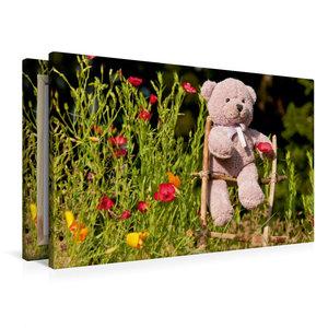 Premium Textil-Leinwand 90 cm x 60 cm quer Kletterbär im Garten
