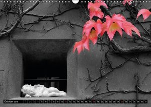 Red White Black (Wall Calendar 2015 DIN A3 Landscape)