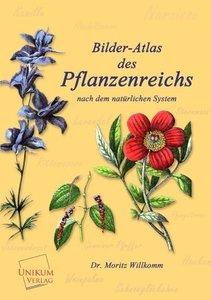 Bilder-Atlas des Pflanzenreichs