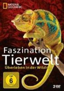 Faszination Tierwelt
