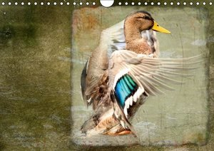 animals for home (Wall Calendar 2015 DIN A4 Landscape)