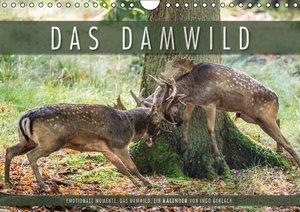 Emotionale Momente: Das Damwild. (Wandkalender 2016 DIN A4 quer)