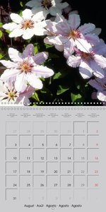 Blossoms of trees and shrubs (Wall Calendar 2015 300 × 300 mm Sq