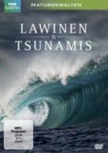 Naturgewalten: Lawinen & Tsunamis