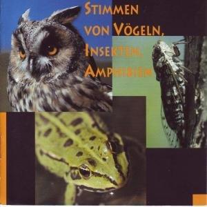 Stimmen Von Vögeln,Insekten,Amphibien