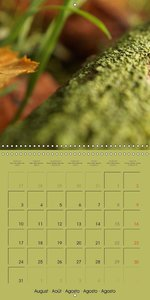 Autumn as the painter (Wall Calendar 2015 300 × 300 mm Square)