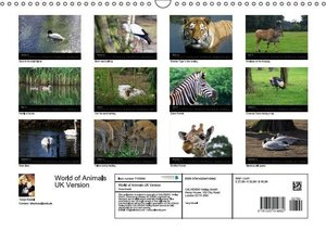 Riedel, T: World of Animals UK