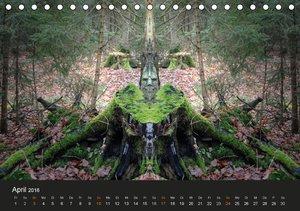 Spiegelwelten - Im Reich der Naturwesen (Tischkalender 2016 DIN