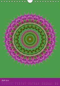 Mandala-Welt 2015 (Wandkalender 2015 DIN A4 hoch)