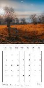 Moods of the Rhine-Area (Wall Calendar 2015 300 × 300 mm Square)