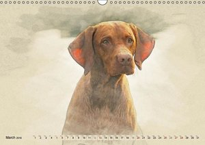 Magyar Vizsla 2016 / UK-Version (Wall Calendar 2016 DIN A3 Lands