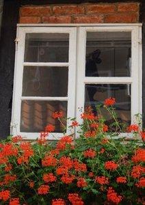 Fenêtres Tape-à-l'oeil (Livre poster DIN A3 vertical)